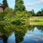Природа и парки Лилля